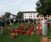 Festa della Vendemmia Bottega, tra musica, storia e gusto