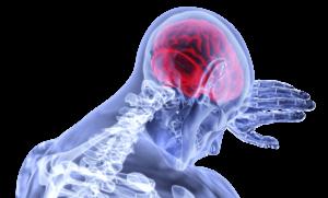 cervello invecchiamento cerebrale