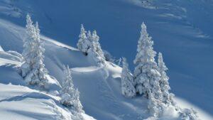 montagne sci neve sciare valtellina vacanza inverno